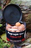 Pop-ups | Oriental / Krill