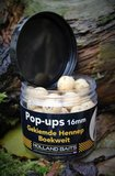 Pop-ups | Gekiemde Hennep / Boekweit