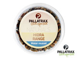 Water Mosselen Pallatrax | Hidra Range