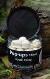 Pop-ups | Dutch Nutz
