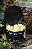 Pop-ups | Scopex / Liver