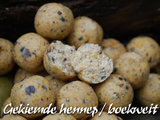 Freezerbaits | Gekiemde Hennep 20 mm