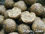 Boilies Bulk Deal | Scopex / Liver 20 mm