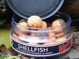 Wafters Two Tone Shellfish