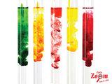 Carp Colour Coctail CarpZoom
