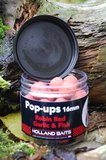 Pop-ups | Robin Red