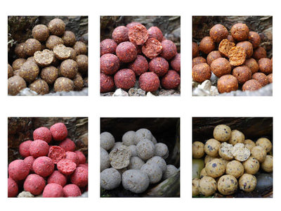 Freezerbaits Boilies Bulk Deal 25 kg.