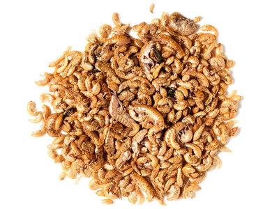 Gammarus Shrimp Dried Naturals | Garnalen