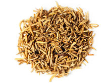 Maggot Dried Naturals | Maden